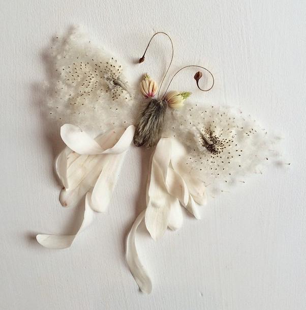 bridget-flores-petalas-colagem-15