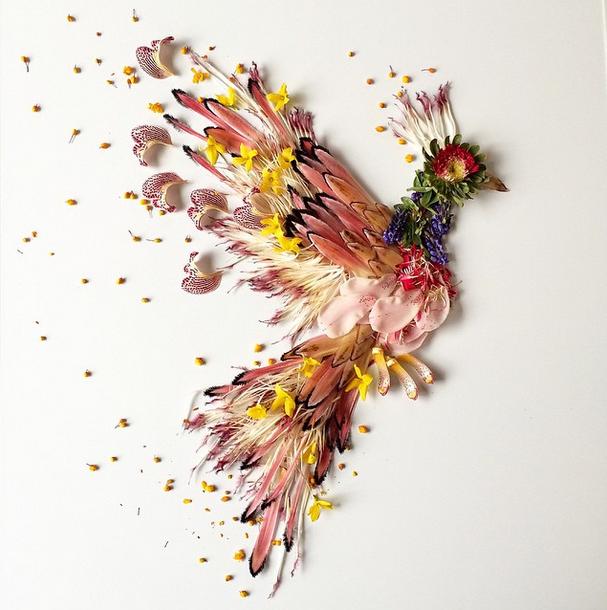 bridget-flores-petalas-colagem-19