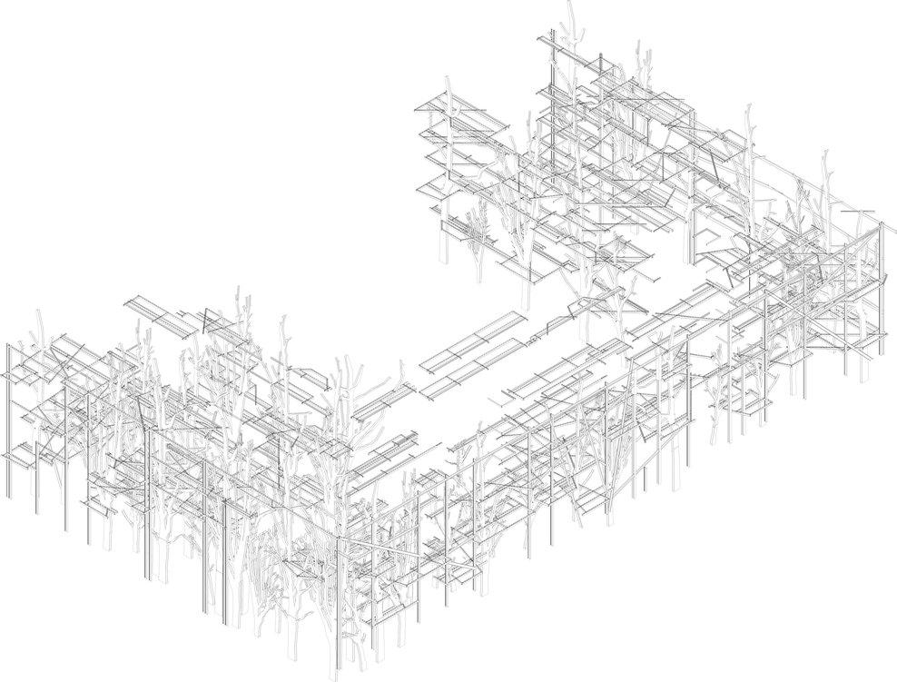 w-Assometria-alberi_balconi_full