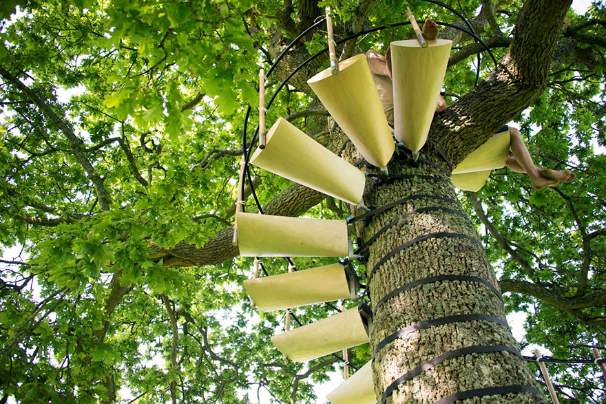 canopy-tree-stairs-thor-ter-kulve-robert-mcintyre-canopystair-5